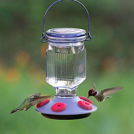 Perky-Pet® Lavender Field Top-Fill Glass Hummingbird Feeder - 16 oz Nectar Capacity