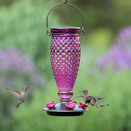 Perky Pet Diamond Wine Top Fill Hummingbird Feeder 9102 2 Perkypet Com