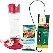 Perky-Pet® Top-Fill Hummingbird Starter Kit