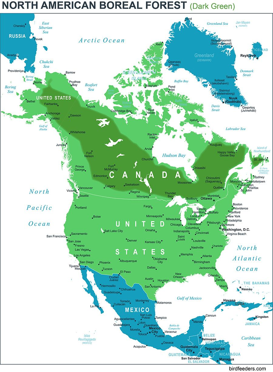 North AmericaFollow North America On Pholder Images That Made