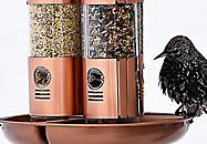 Filling tube bird feeders