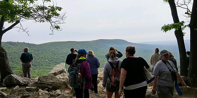 The early part of Hawk Mountain's PA Songbirds class includes a hike for viewing its famous migratory corridor.