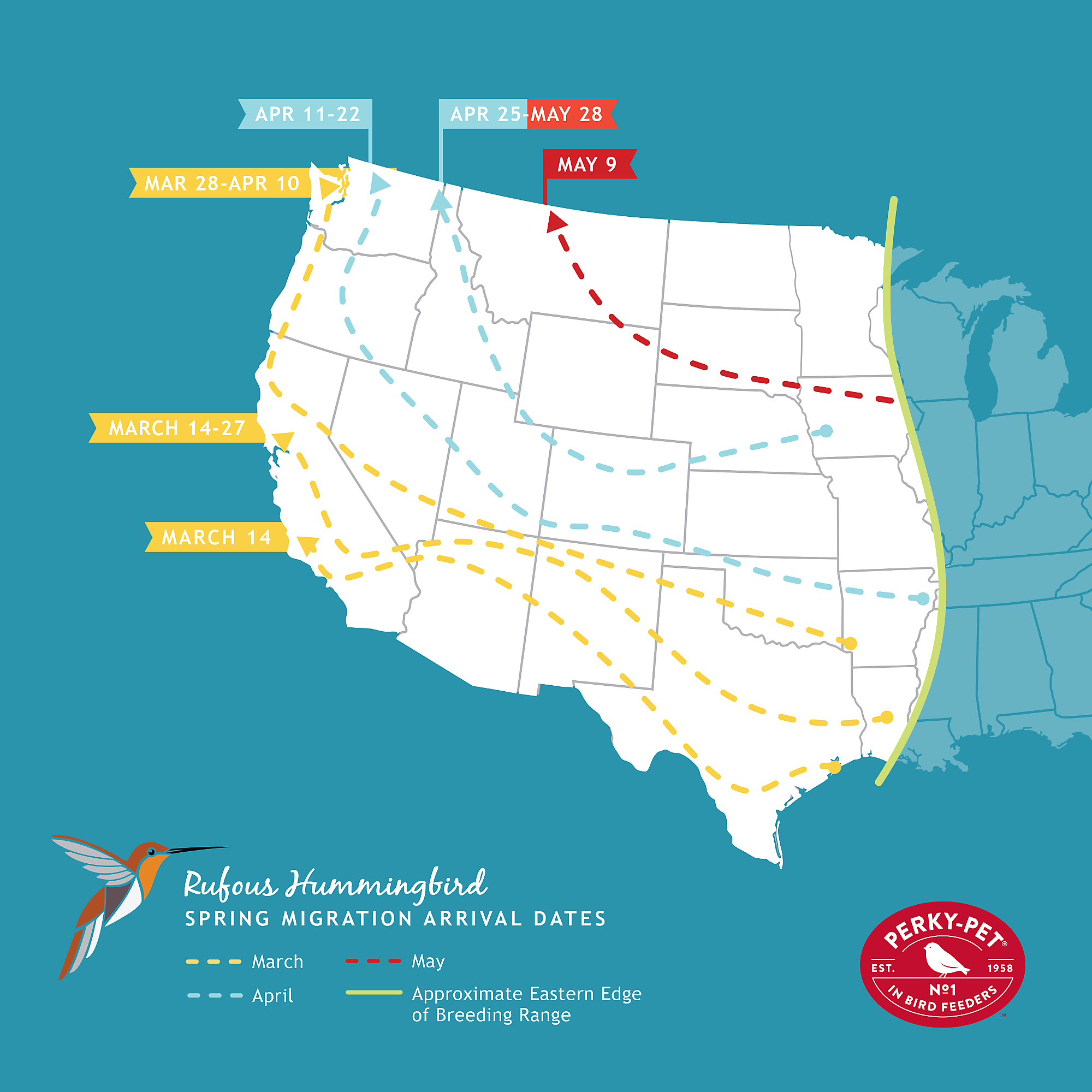 rufous hummingbird migration map
