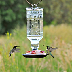 Perky-Pet® Clear Antique Bottle, Glass Hummingbird Feeder