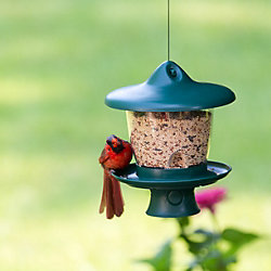Perky-Pet® Height-Adjust Feeder With Retractable Cord