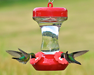 130TF Hummingbird Feeder