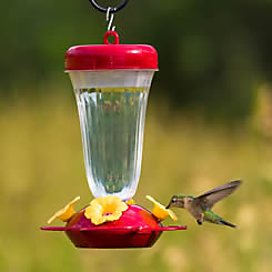 Perky-Pet® Top Fill Hummingbird Feeder with Free Nectar
