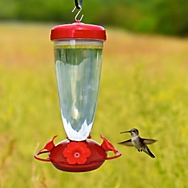 Perky-Pet® Top Fill Hummingbird Feeder
