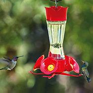 Perky-Pet® Pinch-Waist Glass Hummingbird Feeder with Free Nectar