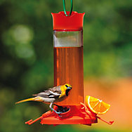 Perky-Pet® Fruit Trio Oriole Nectar Feeder