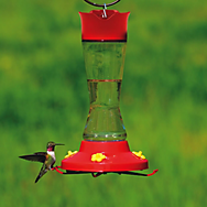 Perky-Pet® Pinch Waist Glass Hummingbird Feeder 16 oz Nectar Capacity