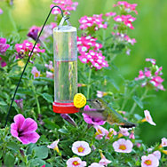 Perky-Pet® Planter Box Plastic Hummingbird Feeder with Hanger - 3 oz Nectar Capacity