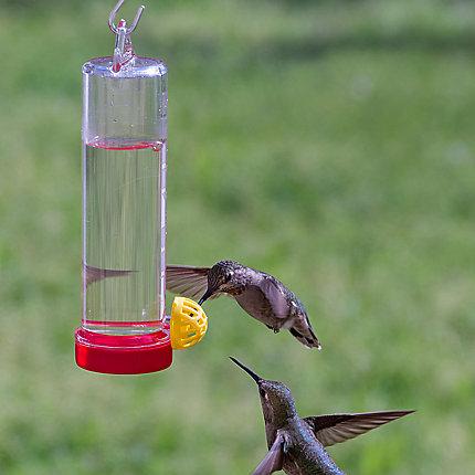 Perky-Pet® Planter Box Plastic 3 oz Hummingbird Feeder with
