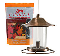 Lyric® Cardinal Seed & Perky-Pet® Copper Bird Feeder Bundle