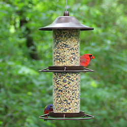 Perky-Pet® Panorama Bird Feeder