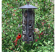 Perky-Pet® Squirrel-Be-Gone® III Wild Bird Feeder