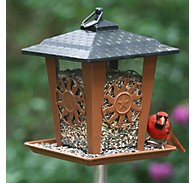 Perky-Pet® Sun & Star Lantern Feeder