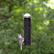 Perky-Pet® Sunflower Seed and Peanut Feeder