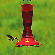 Perky-Pet® Pinch Waist Plastic Hummingbird Feeder