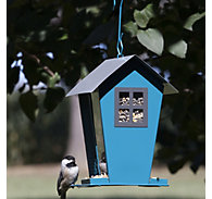 Perky-Pet® Aqua Seed Duo Wild Bird Feeder - 2 lb Seed Capacity