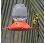 Perky-Pet® Oriole Feeder - 32 oz Nectar Capacity
