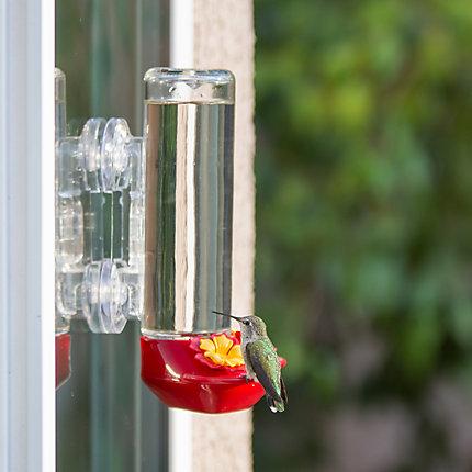 Perky Pet Window Mounted Gl Hummingbird Feeder Model 455 2 Perkypet