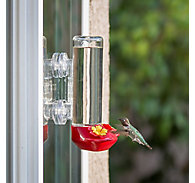 Perky-Pet® Window Mounted Glass Hummingbird Feeder - 14 oz Nectar Capacity