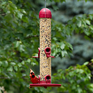 Perky-Pet® Bird Feeder