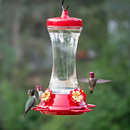 Perky-Pet® Adjustable Perch Glass Hummingbird Feeder - 20 oz Nectar Capacity