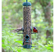 Perky-Pet® Classic Bird Feeder
