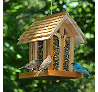 Perky-Pet® Mountain Chapel Wild Bird Feeder - 3.5 lb Seed Capacity