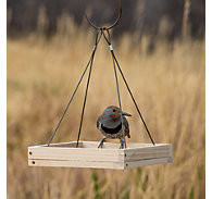 Perky-Pet® Hanging Tray Bird Feeder - 1.6 lb Seed Capacity