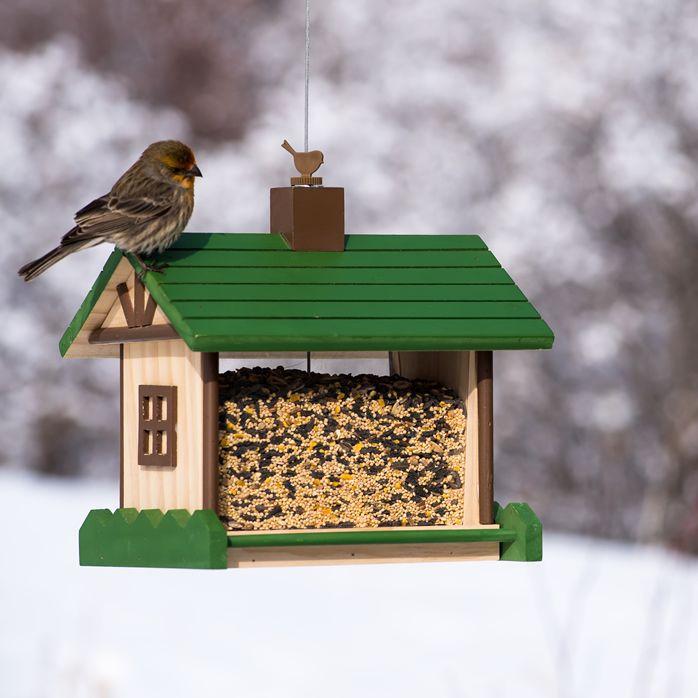 Perky Pet 174 Mountain Lodge Wood Bird Feeder 50179