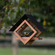 Perky-Pet® The Architect Bird Feeder - 1/4 cup Seed, Worm, Nut, and Fruit Capacity