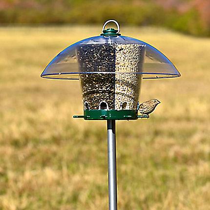 Bird Feeder Pole Home Hardware