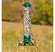 Perky-Pet® Squirrel Slammer Wild Bird Feeder - 3.5 lb Seed Capacity