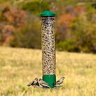Perky-Pet® Premium Squirrel-Be-Gone® Breakaway Wild Bird Feeder