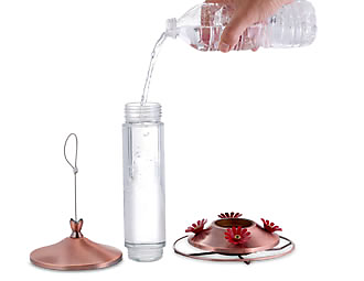 wide mouth bottle for easy cleaning