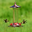 Copper and glass hummingbird feeder