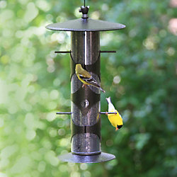 Lyric® Nyjer® Seed & Perky-Pet® Upside Down Goldfinch Feeder Bundle