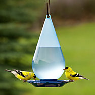 Perky-Pet® Droplet Bird Waterer - 1 qt Water Capacity