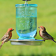 Perky-Pet® Mason Jar Wild Bird Waterer - 32 oz Water Capacity