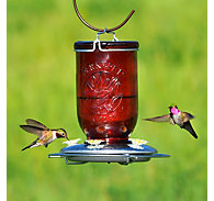 Perky-Pet® Red Mason Jar Glass Hummingbird Feeder - 32 oz Nectar Capacity