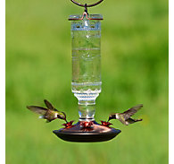 Perky-Pet® Clear Antique Bottle Glass Hummingbird Feeder - 10 oz Nectar Capacity