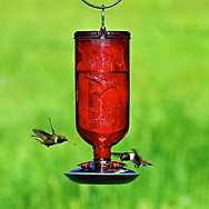 Perky-Pet® Antique Bottle Glass Hummingbird Feeder - 16 oz Nectar Capacity
