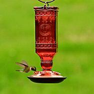 Perky-Pet® Red Square Antique Bottle Glass Hummingbird Feeder - 24 oz Nectar Capacity