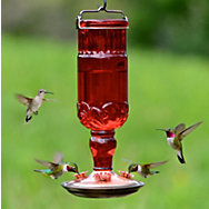 Perky-Pet® Red Antique Bottle Glass Hummingbird Feeder - 24 oz Nectar Capacity