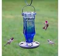 Perky-Pet® Sapphire Starburst Vintage Hummingbird Feeder - 16 oz Nectar Capacity