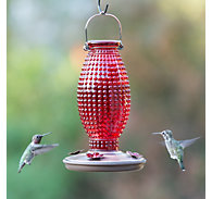 Perky-Pet® Red Hobnail Vintage Hummingbird Feeder - 16 oz Nectar Capacity