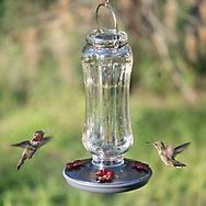 Perky-Pet® Starglow Vintage Hummingbird Feeder - 16 oz Nectar Capacity
